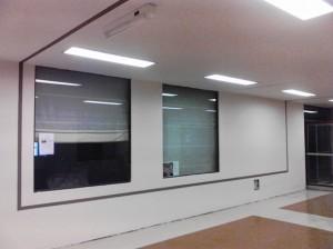 Universidad Austral 0